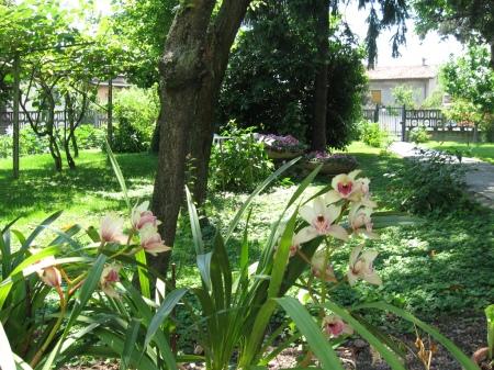 https://undentedileone.files.wordpress.com/2017/09/orto-giardino.jpg